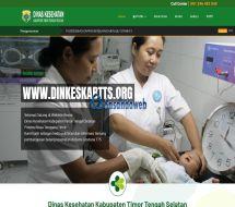 01-homepage-dinkestts