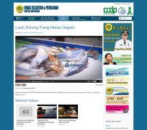 gallery-video